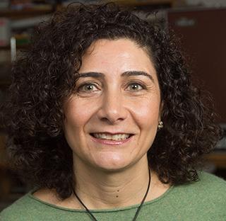 Francesca Cotrufo